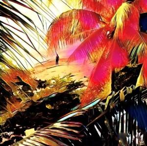Beach Combing at Dawn, Marlene Hubbard